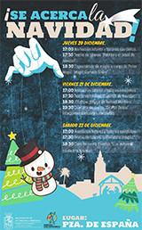 Navidad los palacios